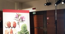 Luci puntate nella sala riunioni dell'Hotel NH Torino Santo Stefano per tour Clarins