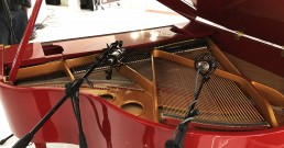 Microfoni Shure e piano per Stand Mitsubishi Electric_MCE 2018